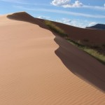 Courtesy Coral Pink Sand Dunes State Park_Courtesy Utah Office of Tourism