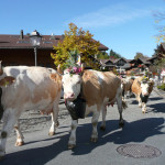 Image Courtesy Gstaad Saanenland Tourismus
