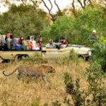 Image Couresy Kapama Private Game Reserve