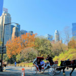 New York guided vacation